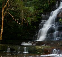 Somersby Falls by Lauren  Tierney