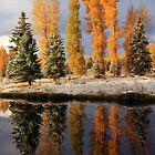 Cottonwood Reflection by David Kocherhans
