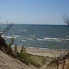 Beach Dunes by Brad