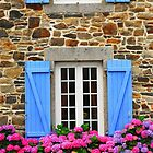 Country house in Brittany by Elena Elisseeva