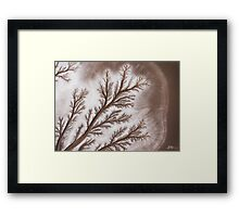 Feathered Riverbed Framed Print