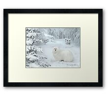 Snowdrop the Maltese - Cold Feet ! Framed Print