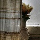 26.11.2014: Plastic Flower at the Window I by Petri Volanen