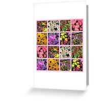 COLORFUL WILD FLOWER PHOTO COLLAGE Greeting Card