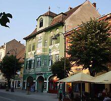 Sibiu Street by Pat Herlihy