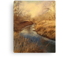 Following the Creek Canvas Print