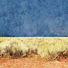 summer dry yellow grass and land under dark stormy clouds sky. Grand Teton National Park. by naturematters