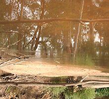 Yarra Reflections III by bellafocus