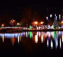 Christmas Lights in Lafreniere Park by StudioBlack