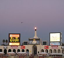 USC game at Colliseum Los Angeles by cfam