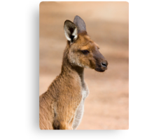Roo Portrait Canvas Print