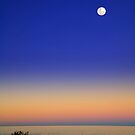 Moonrise over Collaroy  by Sheila  Smart