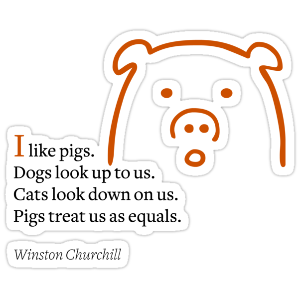 I like pigs by Kurt  Tutschek