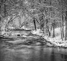 Winter On The Waupaca River by Thomas Young