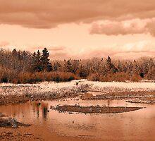 Mill Pond by Gene Cyr