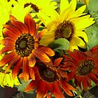 Red and Yellow Sunflowers 794 by NiftyGaloot