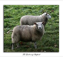 The Lord is my Shepherd. (psalm 23) by Ellen van Deelen
