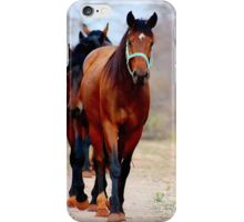 THE WAY HOME.... iPhone Case/Skin