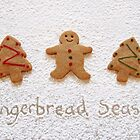Gingerbread season by Sally Kate Yeoman