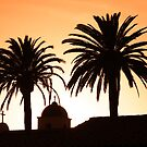 Mission Sunset by Daniel J. McCauley IV