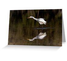 Great Egret ~ Scruffy  Greeting Card