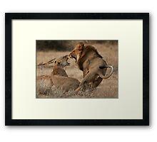 Roar Passion Framed Print