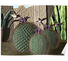 Desert Southwest Hummingbirds Poster