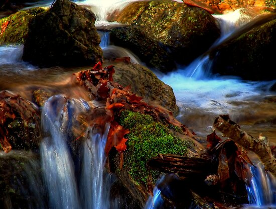 Sitting by the stream by Robert Burns Miller