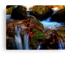 Sitting by the stream Canvas Print
