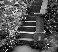 Montsalvat, Eltham by Roberts Birze
