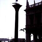 Piazza San Marco by Nicholas Averre