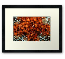 Star Surface Framed Print