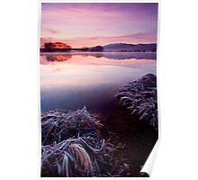 Frozen Pastels Poster