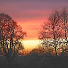 Winter Sunset  by James  Key