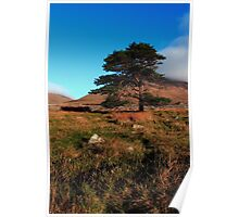 Mournes Glory Poster