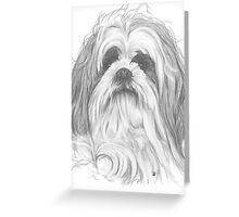 Shih-Poo Greeting Card