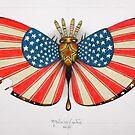 patriot moth by federico cortese