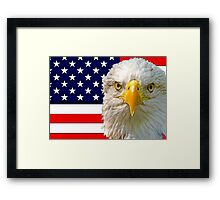 Flag and Eagle  Framed Print