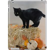 Happy Thanksgiving  iPad Case/Skin