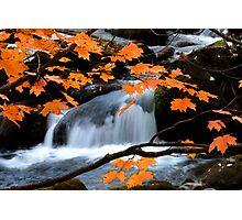 Mountain Splendor  Photographic Print