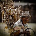 Old Farmer by thirdiphoto