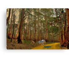 Looking For Dorothy Canvas Print