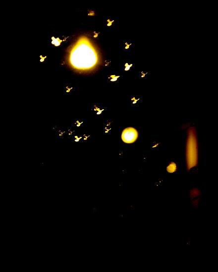 Night Lights.3 by karolina