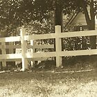 white fence by randi1972