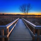 Great Meadows National Wildlife Refuge by Owed to Nature