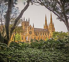 Towers and Spires of St Mary's by TonyCrehan