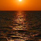 Golden Sunset at pier 60 Clearwater, Florida by BiGPaPa
