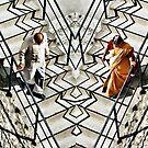 Walk like an Indian by Kurt  Tutschek