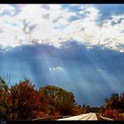 Rays of Watkins Glen by Cheri Perry