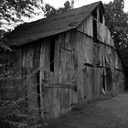 Tobacco Barn by darthdrew